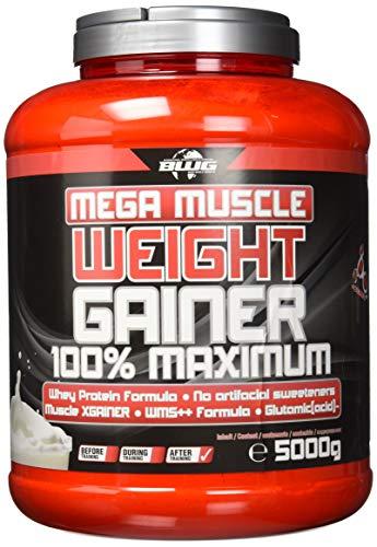 BWG Mega Muscle Weight Gainer 100{184d4d6c6d85c05047dd9e332640eeba6f688f457b267fdfde50d568f87bfdbf} Maximum, Joghurt-Cherry, Dose mit Dosierlöffel, 5000 g