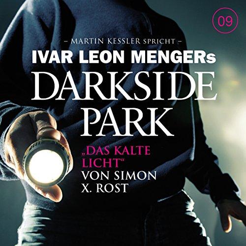 Das kalte Licht (Darkside Park 9) Titelbild