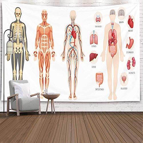 Tapiz para colgar en la pared, tapiz de dormitorio Decoración de habitación Estructura anatómica al aire libre Esqueleto del cuerpo humano Tapiz de invierno muscular Manta de playa Tapiz de festival p
