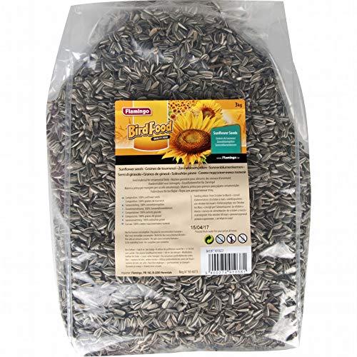 FLAMINGO 101822 graine de tournesol 3 kg - OISEAUX