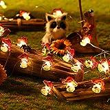 Luces de Cadena de Flores de Cerezo Seta Mariposa, Luces de Hadas de Primavera Verano Funcionadas por Batería y USB de 16,4 ft 50 LEDs Decoración con Control Remoto (Seta)