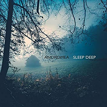Sleep Deep (feat. Ries, Lightseeds)