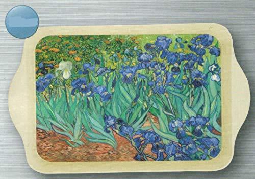 Petit Plateau Metal Vide Poche 20X33cm Peinture Les Iris du Peintre Van Gogh