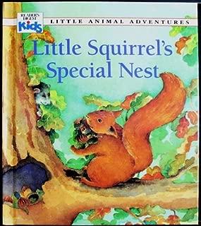 Little Squirrel's Special Nest (Little Animal Adventures)