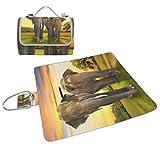 COOSUN - Manta de picnic con diseño de elefantes de la familia sobre el sol, práctica alfombrilla resistente al moho y resistente al agua para picnics, playas, senderismo, viajes, viajes y excursiones
