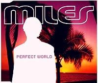 Perfect world [Single-CD]