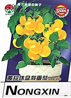 De color amarillo brillante Semillas Tomate Cherry Orgánica Bonsai, 1 Paquete original, 200 semillas / Paquete, Interesante fruta dulce cubierta # NF617