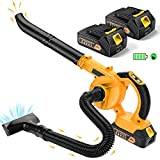 Best Cordless Leaf Blowers - Cordless Leaf Blower with 2 Battery - EKACO Review