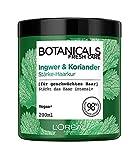 3 x L'Oreal Botanicals Fresh Care Ginger Coriander Strength Cure cada 200ml Fortalece el cabello