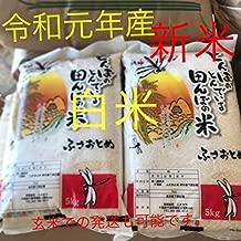 新米 千葉県産 ふさおとめ 白米 10kg 令和元年産