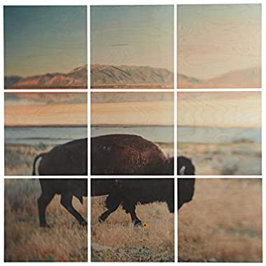 9-Piece Southwest Bison Mural on Wood, 36  x 36