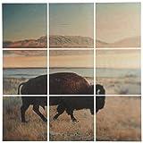 Amazon Brand – Rivet 9-Piece Southwest Bison Desert Mural Wall Art on Wood, 48
