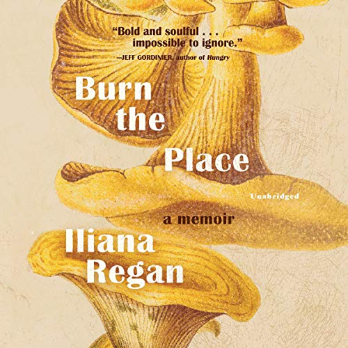 Burn the Place audiobook cover art
