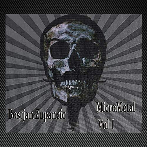 Bostjan Zupancic: Micrometal