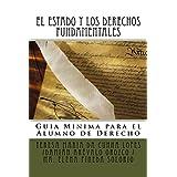 EL ESTADO Y LOS DERECHOS FUNDAMENTALES :  Guía Mínima para  el Alumno de Derecho  (Transformaciones Jurídicas y Sociales en el Siglo XXI  nº 7) (Spanish Edition)
