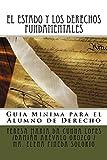 EL ESTADO Y LOS DERECHOS FUNDAMENTALES : Guía Mínima para el Alumno de Derecho (Transformaciones Jurídicas y Sociales en el Siglo XXI nº 7)