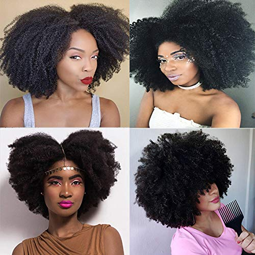 Saga Queen Brazilian Afro Kinky Curly Clip In Hair Extensions 9pcs 20clips 120g/pck Brazilian Virgin Remy Human Hair Afro Clip Ins Natural Black Color (1 bundle 16inch, natural black)
