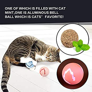 Pecute Jouet Chat 2 en 1 Jeux Labyrinthe Balle Jouet 4 Couches Jouet pour Chat avec l'herbe à Chat, Clochettes et Souris Queue (Noir+Blanc)