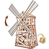 Wood Trick 3D Wooden Puzzle Windmill, Assembly Constructor, Brain Teaser, Best DIY Toy, IQ Game for Teens and Adults