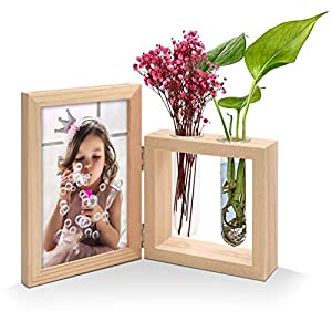 Silk Flower Arrangements JD Concept 4x6 Wood Picture Frame and Plant Vase Combo, Double Sided Display Hinged Desktop Wooden Stand, Glass Planter Terrarium for Hydroponics Plants/Dried Flowers (2 Vase)