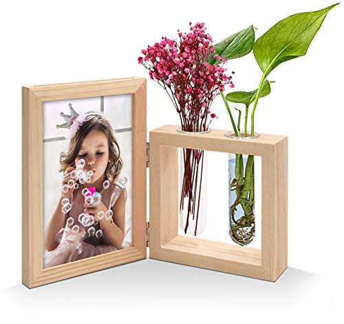 JD Concept Marco de Fotos de 10 x 15 cm con jarrón de 2 Plantas, Soporte de Madera de Escritorio con bisagras de Doble Cara, terrario de Maceta de Vidrio para Plantas hidropónicas/Flores secas