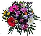 Flora Trans Blumenstrauß zum Geburtstag -Blumenstrauß der Jahreszeit