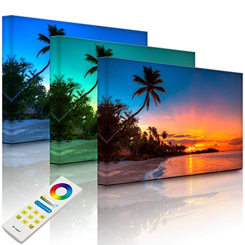 Lightbox-Multicolor | Leuchtbild | Palmen am Strand | 100x70 cm | Fully Lighted