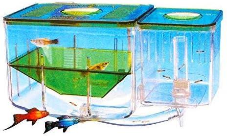 Saim Fish Breeding Special sale item Tanks Nursery Circulating Aquarium Manufacturer direct delivery Automatic