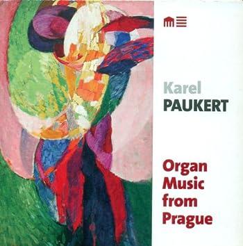 Organ Recital: Paukert, Karel - Dvorak, A. / Foerster, J.B. / Janacek, L. / Klicka, J. / Novak, V. / Wiedermann, B.A.