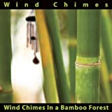Wind Chimes In a Bamboo Forest