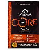 Wellness CORE Original Turkey & Chicken