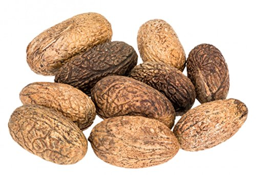 NaDeco Uxi Nuss Samen 10 Stück ca. 3-5cm Uxi Kerne Uxi Seed Raffianuss Coco Orinocensis