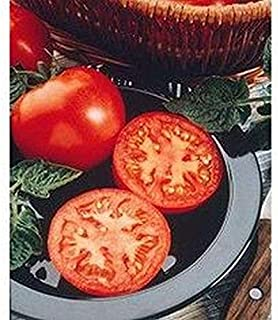 Husky F1 Hybrid Tomato Seeds (Red) - Excellent choice for home gardens.!!!(25 - Seeds)