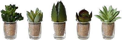 抗菌・消臭・防汚効果 人工観葉植物 リトルサキュレントファミリー 5Pセット