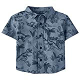 The Children's Place Baby Boys' Short Sleeve Button Down Shirts, FEDERALBLU, 18-24MONTH
