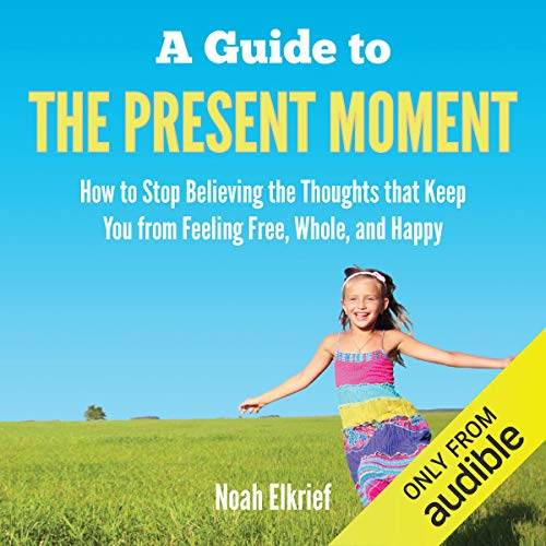 Couverture de A Guide to the Present Moment