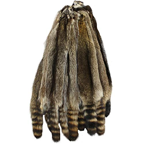 Glacier Wear Heavy Canadian Raccoon Fur Pelt (34 to 38 inches)