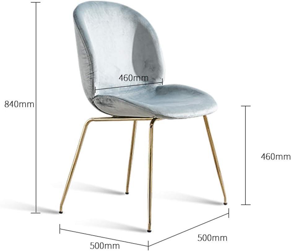 SLL- Chaise de Salle, Chaise de Bureau Simple, créative Dossier, Chaise Loisirs, Maison Adulte Chaise de Salle Moderne (Color : Blue) Gray