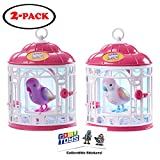 Little Live Pets Bird with Cage - Secret Angie and Dreamy Genie (2 Pack) with 2 GosuToys Stickers Gift Bundle