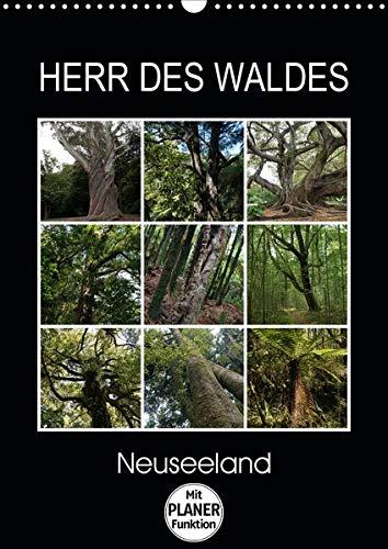 Herr des Waldes - Neuseeland (Wandkalender 2020 DIN A3 hoch): Neuseelands Pflanzen - ökologisch sehr vielfältig - entwickelten sich langsam im ... 14 Seiten ) (CALVENDO Natur)