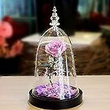 GPWDSN Glas Licht Künstliche Rose, Romantische LED Blume Lampe Schönheit Und Das Biest Rose Für...