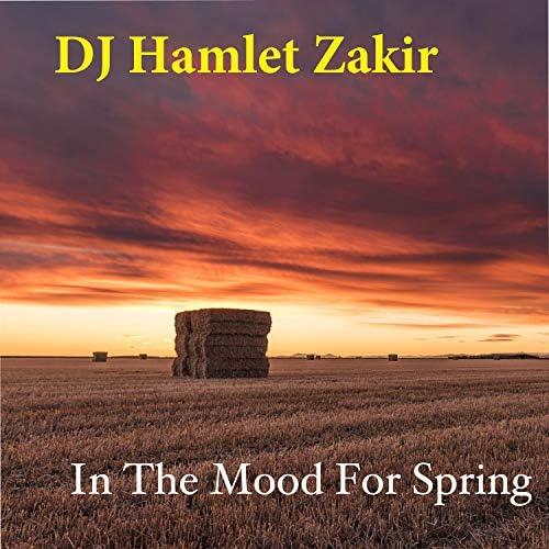DJ Hamlet Zakir