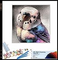 ペイントバイナンバー 大人用 漫画のオウムの動物 によるペイント 大人・子供・初心者用 アクリルペイント 数字による絵画 絵画 キット 自宅 壁 リビングルーム ベッドルーム 装飾 40x40cmフレームレス