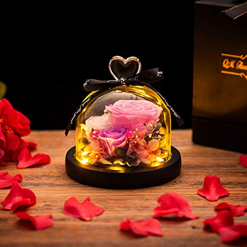 Beauty and the Beast Rose in Glass Dome LED Lights Everlasting Silk...