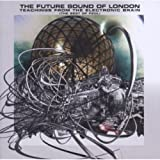 Teachings From the Electronic Brain: The Best of FSOL von The Future Sound of London