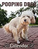 Dogs Pooping Calendar 2022: funny calendar gift ideas 2022 for man women or friends who love dogs on birthday or Christmas with high resolution pooping dog photo