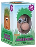 Tobar Mr Grasshead Hair Grow Toy