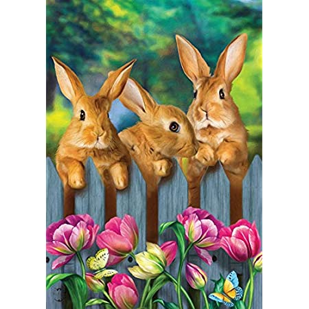 Amazon Com Toland Home Garden Bunny Tulip 28 X 40 Inch Decorative Spring Easter Cute Rabbit Flower House Flag Outdoor Flags Garden Outdoor