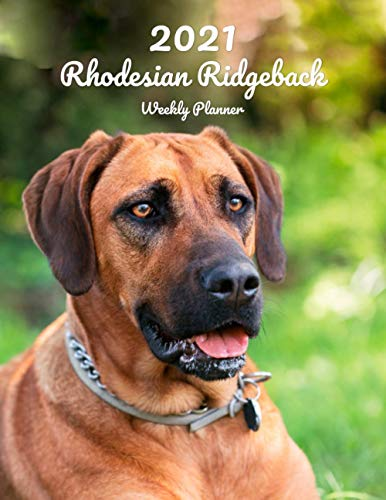 2021 Rhodesian Ridgeback Weekly Planner: 14 Months | 124 pages 8.5x11 in. | Diary | Organizer | Agenda | Appointment | Calendar | For Dog Lovers