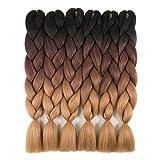 RAYIIS 6 Packs Ombre Braiding Hair Kanekalon Synthetic Braiding Hair Extensions...